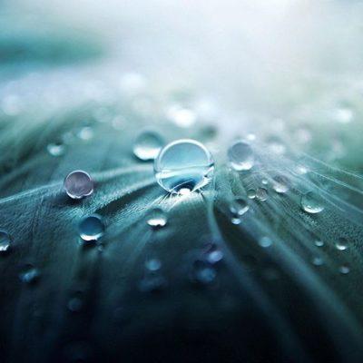 Unsere Mitmenschen – Soziale Kontakte pflegen und genießen